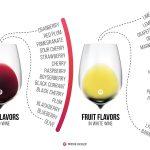 Saveurs de vin: Qu'est-ce qui est juste? Qu'est-ce qui ne va pas?