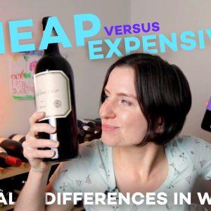 Test de dégustation de vin bon marché vs cher (7 $ vs 75 $)