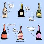"""Le meilleur champagne pas cher n'est pas appelé """"Champagne"""""""