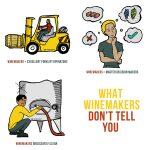 Ce que les vignerons ne vous disent pas sur la fabrication du vin