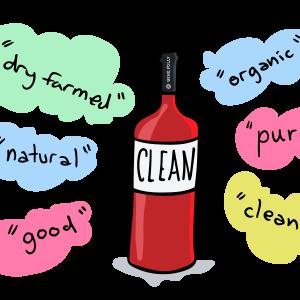 Vins propres: la vérité sur les amines biogéniques et le vin
