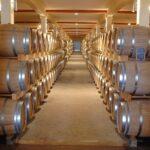 Bois, béton ou inox, quelles cuves à vin choisir ?