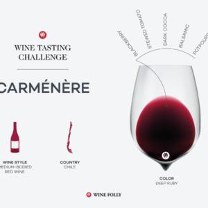 Défi dégustation: Carménère chilienne    Folie du vin