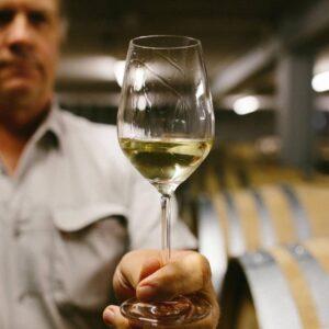 Chardonnay de Nouvelle-Zélande – Joyau du Pacifique Sud